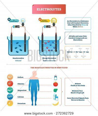 Electrolytes Test Vector Illustration. Isolated Body Fluid Labeled Diagram Example. Ethanol And Sodi