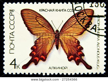 UNION OF SOVIET SOCIALIST REPUBLICS - CIRCA 1987: a 4 kopec stamp from the USSR (Scott 2008 catalogue number 5525) shows image of a Chinese windmill butterfly (Atrophaneura alcinous), circa 1987