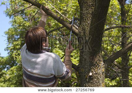 hombre serrar una rama de árbol con una sierra de mano