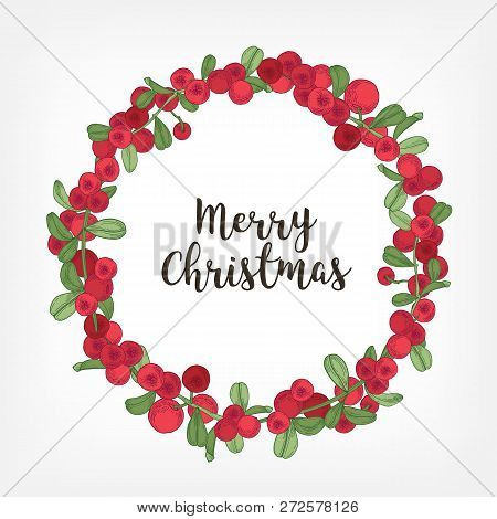 Merry Christmas Lettering Inside Holiday Wreath Or Circular Garland Made Of Lingonberries. Round Fra