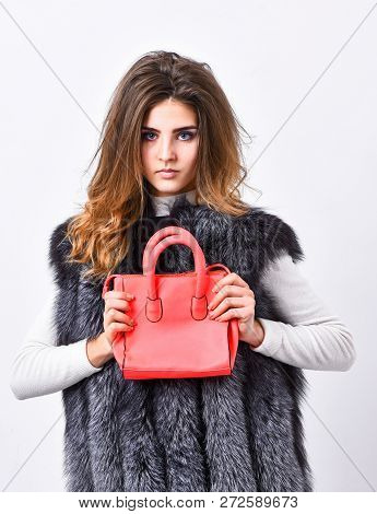 Fashion Stylish Accessory. Fashion And Shopping Concept. Female Stylish Fashion Model. Woman In Fur