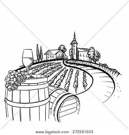 Vineyard Barrel And Glass Drawing, Hand-drawn Vector Food Illustration For Vine Label And Social Med