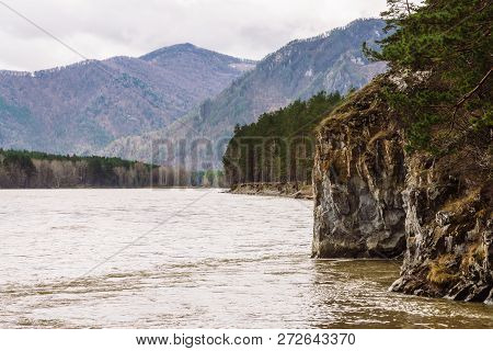 Beautiful Mountain Landscape With Steep Cliff Near Mountain River. Rainy Weather In Altai. Coniferou