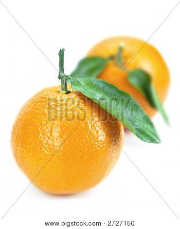 Naranjas001