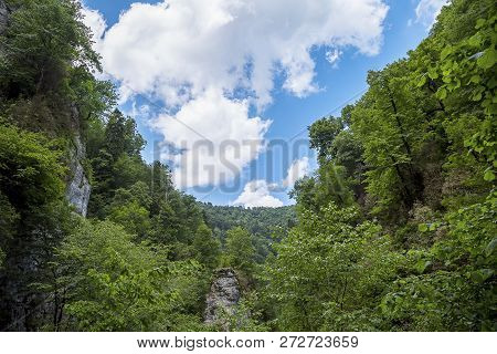 Beautiful Adventurous Background With Trees And Montains On The Side