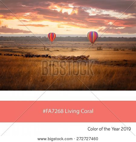 Balloons over the Masai Mara as an example of the trend colour of the year 2019, Living Coral, with corresponding colour hex code.