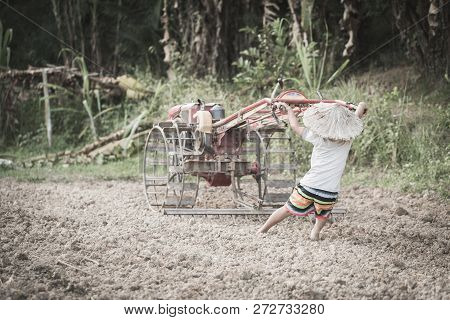 Child Labor, Poor Children Driving A Plow Farming Area, Children Have To Work Because Of Poverty, Wo