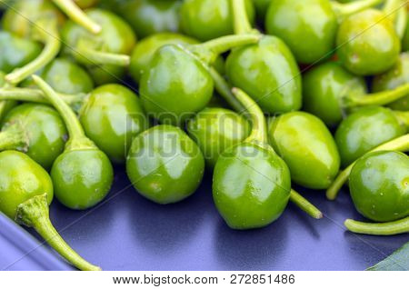 Green Cherry Peppers. Scinentific Name Is (capsicum Frutescens. Linn.) On Black Dish