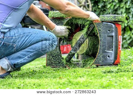 Summer And Spring Season Sunny Lawn Mowing In The Garden..