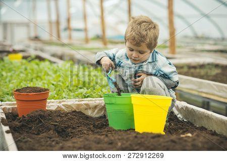 Garden Exhibition. Garden Exhibition In Modern Greenhouse. Master Class On Garden Exhibition. Garden