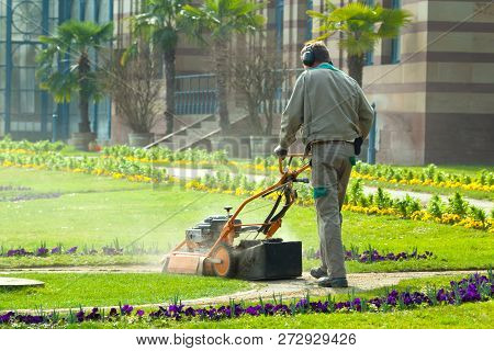 Process Of Lawn Mowing, Concept Of Mowing The Lawn, Lawnmower Cutting Grass With Gardening Tools..