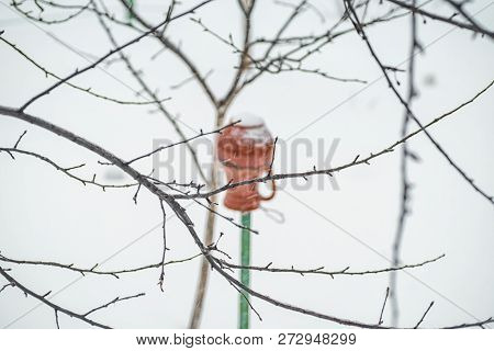 Winter Landscape. Pot Hangs On A Tree In Winter.