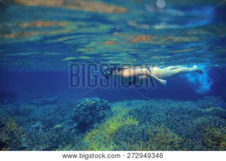 Woman Snorkel In Coral Reef. Young Girl In Bikini Swimming Underwater. Snorkeling In Tropical Sea. S