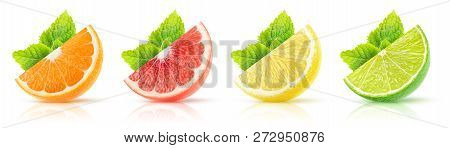 Isolated Citrus Fruits Collection. Wedges Of Orange, Pink Grapefruit, Lemon And Lime With Mint Leave