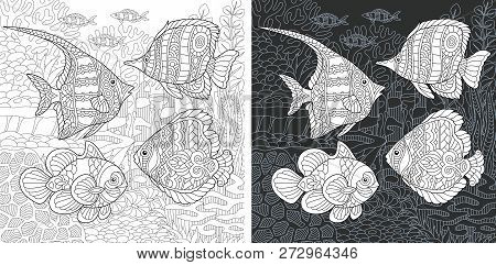 Coloring Page. Coloring Book. Colouring Picture With Tropical Fishes Drawn In Zentangle Style. Antis