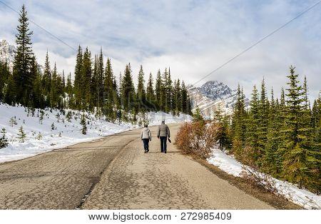 Beautiful Canadian Rockies Mountain At Banff National Park In Alberta, Canada. Trail To Peyto Lake.