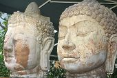 The many faces of buddha in stone form poster