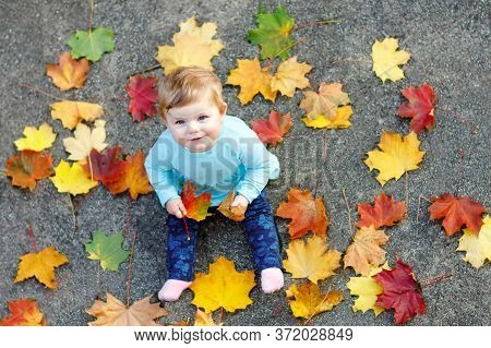 Adorable Little Baby Girl In Autumn Park On Sunny Warm October Day With Oak And Maple Leaf. Fall Fol