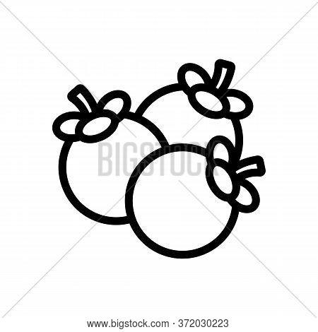 Mangosteen Fruit Heap Icon Vector. Mangosteen Fruit Heap Sign. Isolated Contour Symbol Illustration