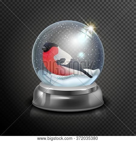 Christmas Realistic Snow Globe With Bullfinch And Snow Isolated On Transparent Background Vector Ill