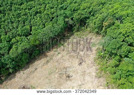 Environmental damage. Deforestation and logging. Aerial photo of forest cut down causing climate change