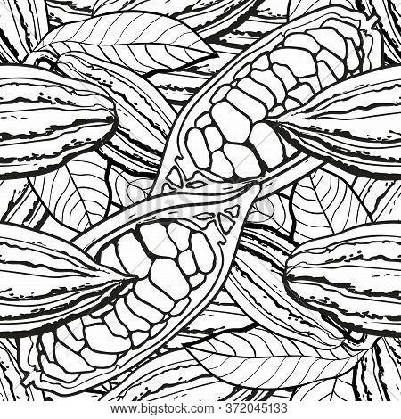 Chocolate Cocoa Bean Seamless Pattern - Colorless Black And White Background Drawing Of Cocoa Plant