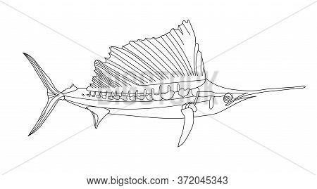 Long-snouted Sea Needle, Swordfish, Antistress Fish Coloring Page. Sea Life. Undersea World