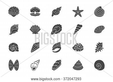 Seashell, Oyster, Scallop Flat Icons. Vector Illustration Included Icon As Nautilus, Spiral Shell, S
