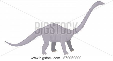 Diplodocus In Cartoon Style. Herbivorous Dinosaur Isolated On White Background.