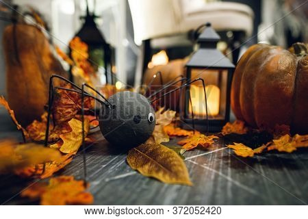 Halloween Decor For The Celebration
