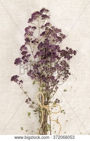 Bunch Of Dry Herbal Oregano Twigs On Linen Background.