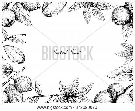 Tropical Fruits, Illustration Frame Of Hand Drawn Sketch Lemon Guava Or Psidium Littorale And Wild P