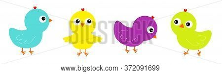 Bird Icon Set Line. Cute Cartoon Funny Kawaii Baby Character. Colorful Chicken Chick. Face Head. Hap