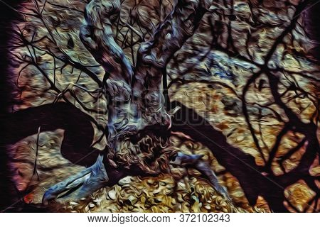Close-up Of Leafless Small Tree With Twisted Twigs And Dry Trunk Under Dramatic Light, On A Burnt Fo