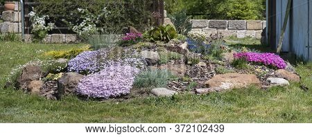 Panaramic View On Spring Garden With Beautiful Rock Garden In Full Bloom With Pink Phlox Subulata, A