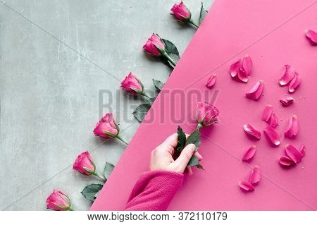 Diagonal Geometric Paper Background, Copy-space. Flat Lay, Female Hand Hold Pink Rose, Scattered Pet