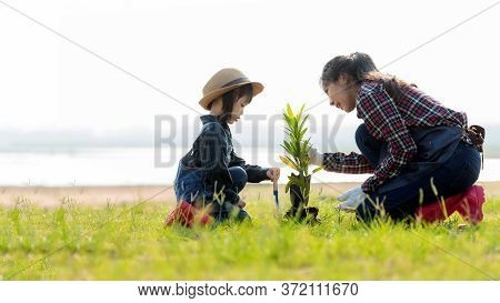 Asian  Kid Daughter Helping Mother Water And Sapling  The Plant Tree Outdoors In Nature Spring For R