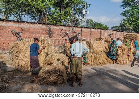 Paharpur, Bangladesh - November 6, 2016: Bunches Of Straw At The Local Market In Paharpur Village, B
