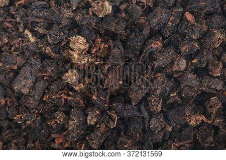 Granular Tea Plant Natural Macro Texture Background