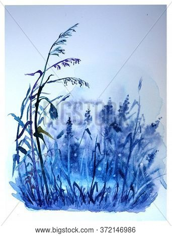 Watercolor Illustration Of A Puddle In A Meadow With Grasses And Fireflies.
