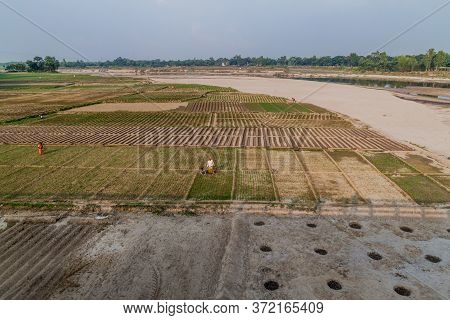 Kantanagar, Bangladesh - November 8, 2016: Peasants On A Field In Kantanagar Near Dhepa River, Bangl