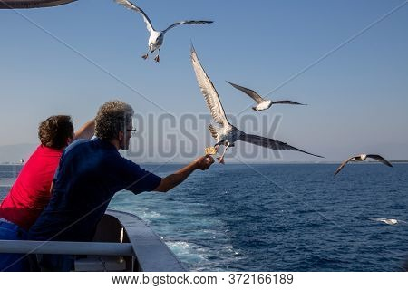 Thassos / Greece - 10.28.2015: Men Offering Food To Seagulls From The Deck Of An Island Ferry, Seagu