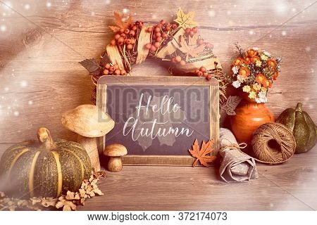 Fall Rustic Decorations, Text Hello Autumn On A Blackboard. Natural Fall Thanksgiving Harvest. Autum