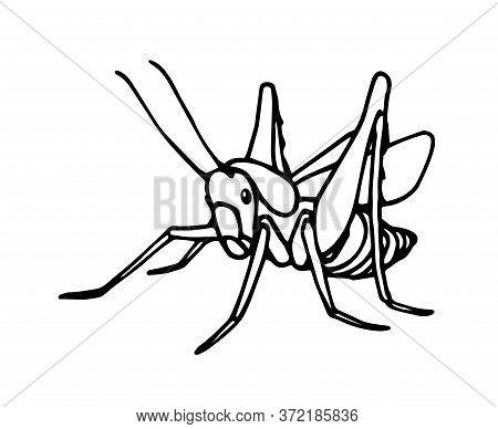 Grasshopper Contour.eps