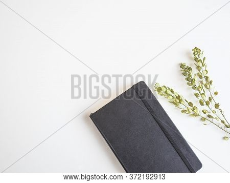 Black Pocket Journal And Dry Green Plant On White Background. Top View. Study, Education, Work Conce