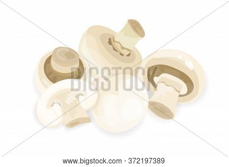 Appetizing Fresh Mushrooms Composition Vector Illustration. Heap Of Raw Organic Fungus With Legs And