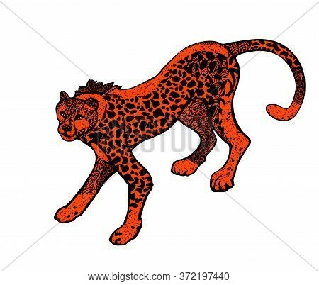 Wild Cat, Stylized Leopard In Color Lush Lava Isolated On The White Background. Vector Illustration