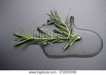 Fresh Rosemary With Olive Oil On A Dark Background