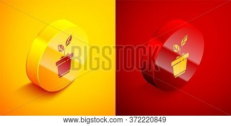 Isometric Plant In Pot Icon Isolated On Orange And Red Background. Plant Growing In A Pot. Potted Pl