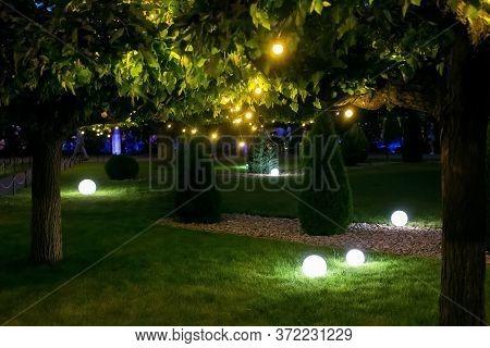Illumination Backyard Light Garden With Electric Ground Sphere Lantern With Stone Mulch And Thuja Bu
